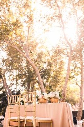 WeddingPortfolio-47